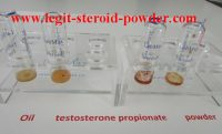 Testosterone Propionate Dosages